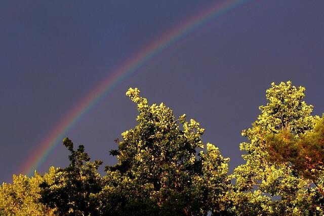 mir_zu_liebe_regenbogen