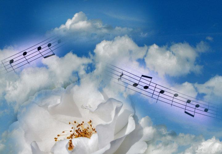 Die Melodie meines Lebens!