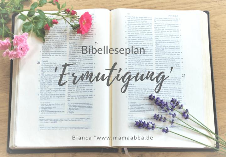 Bibelleseplan zum Buch 'Anker im Sturm'
